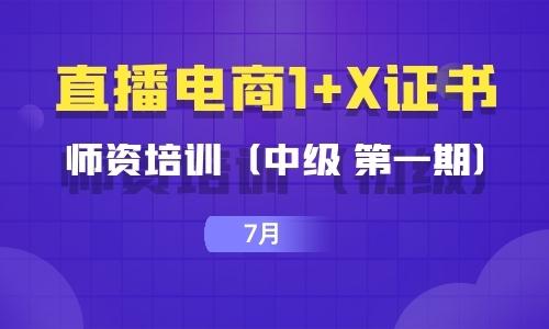2021年7月| (中级 第一期)直播电商1+X证书师资培训暨考评员培训