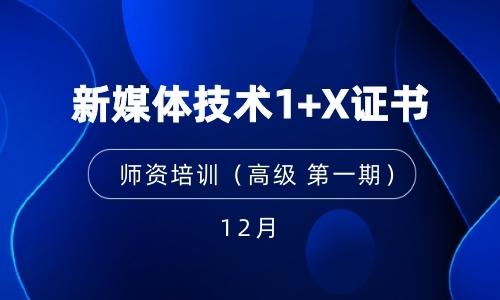 2021年12月  (高级 第一期)新媒体技术1+X证书师资培训暨考评员培训